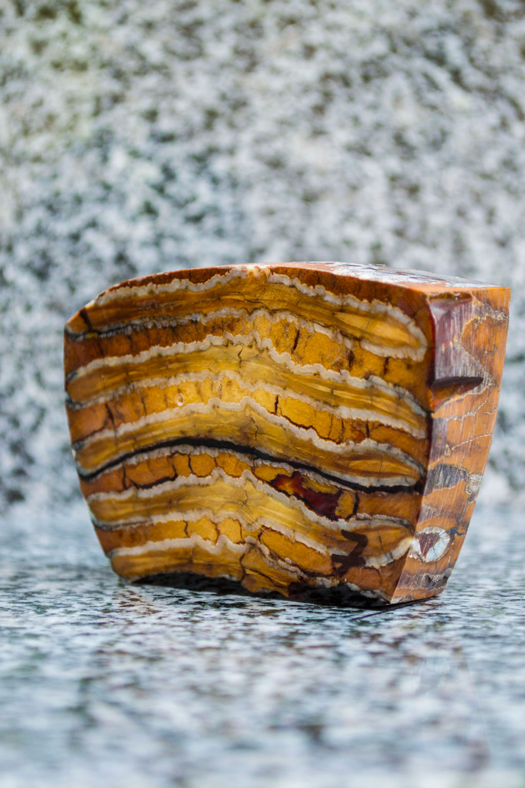 Stabilized Mammoth, Molar tooth, for sale, stabilized